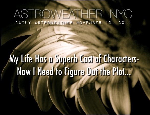 NOVEMBER 12, 2014 NYC
